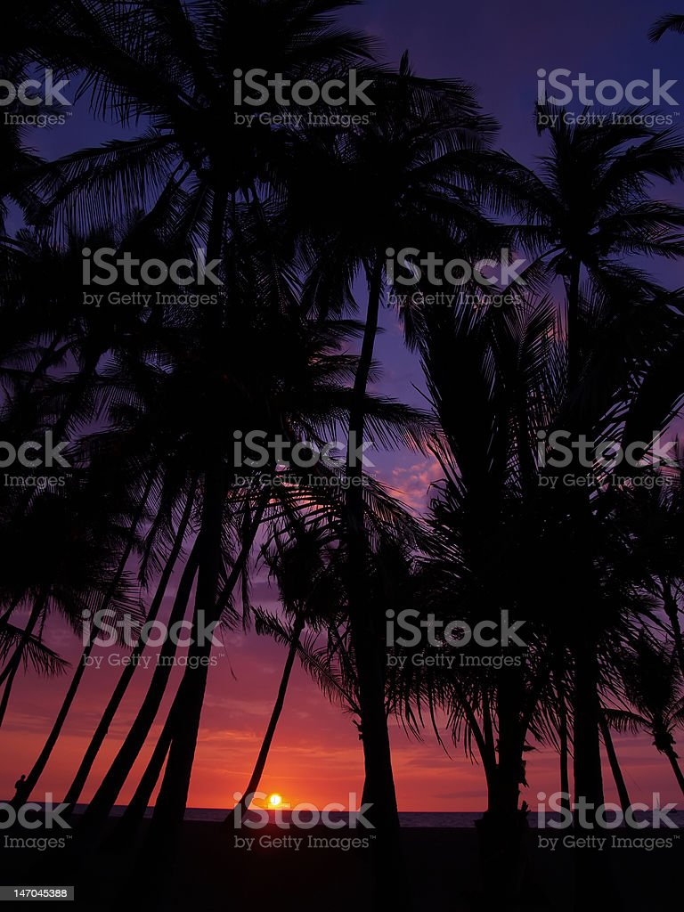 Tropical sunset at Waikoloa,Hawaii royalty-free stock photo