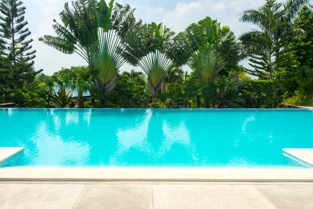 Tropical Swimming Pool Tropical swimming pool surrounded by trees poolside stock pictures, royalty-free photos & images