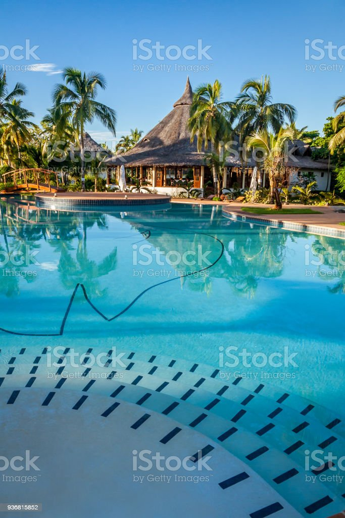 Tropical Swimming Pool Stock Photo - Download Image Now - iStock