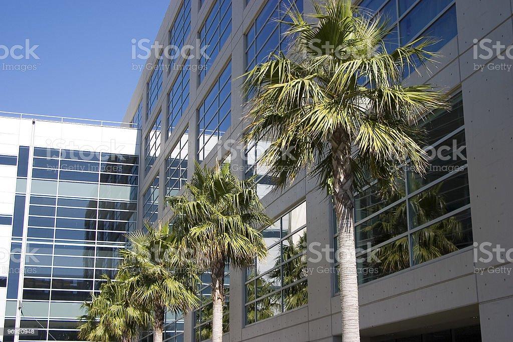 Tropical Tech 2 royalty-free stock photo