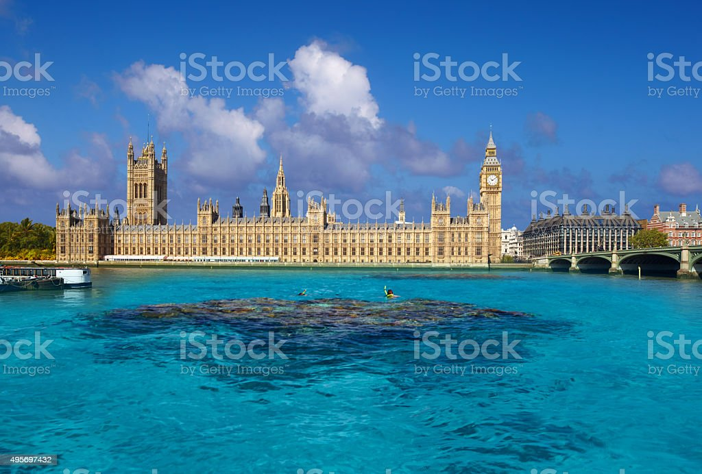 Tropical Thames And The Palace Of Westminster stock photo