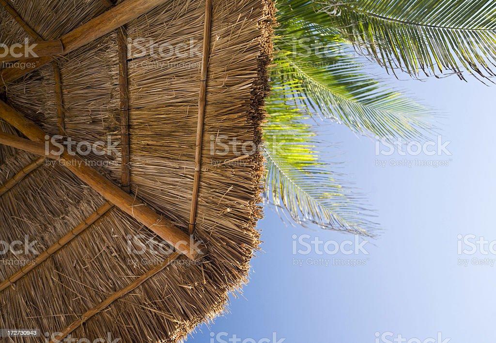 Tropical Umbrella or Palapa stock photo