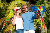 istock Tropical Vacation: Couple on Rope Bridge with Macaws 157585414