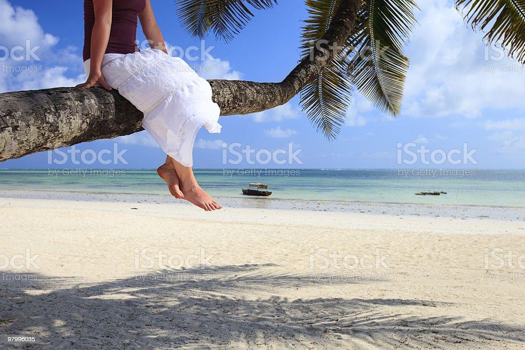 Tropical vacation royalty free stockfoto
