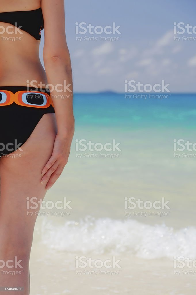 Tropical view royalty-free stock photo