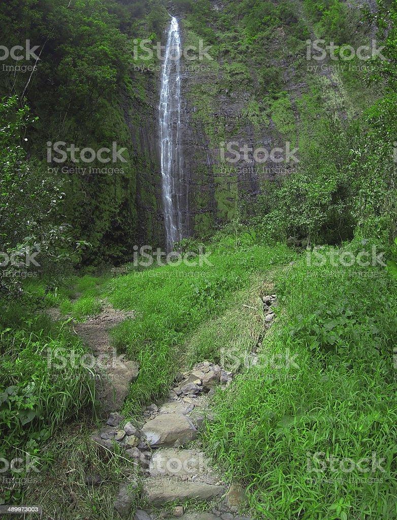 Tropical Watefall stock photo