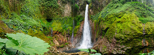XXXL: Tropical waterfall in volcanic crater A waterfall plunges 300 ft into the crater of an extinct volcano in a tropical rainforest in Costa Rica. central america stock pictures, royalty-free photos & images