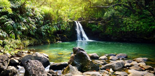 Tropical waterfall Lower Waikamoi Falls and a small crystal clear pond, inside of a dense tropical rainforest, off the Road to Hana Highway, Maui, Hawaii stock photo