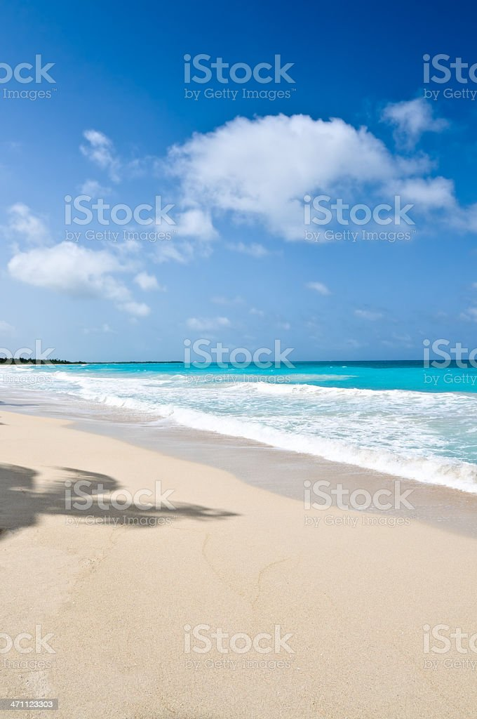 Tropical white sand beach royalty-free stock photo