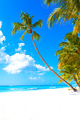 Vacation summer holidays background wallpaper - sunny tropical Caribbean paradise beach with white sand on island Thailand style with palms