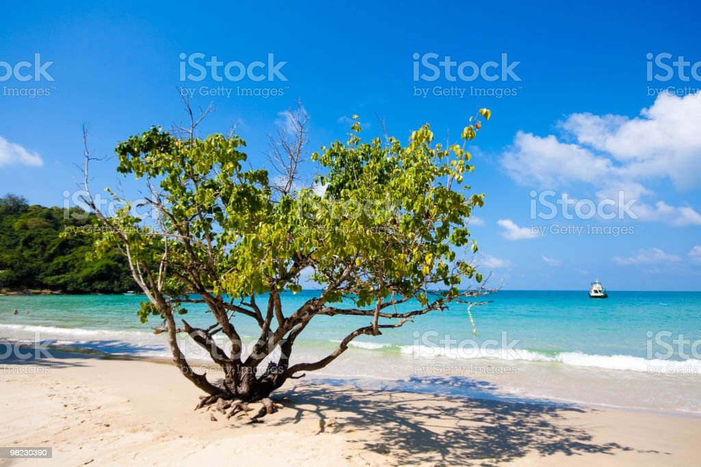 Tropical white sand beach with turquoise water, Koh Samet, Thailand royalty-free stock photo