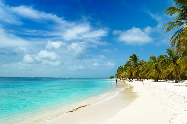 isola tropicale spiaggia di sabbia bianca - bahamas foto e immagini stock
