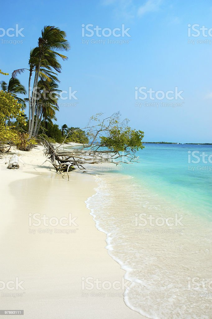 Tropical white sand island beach royalty-free stock photo