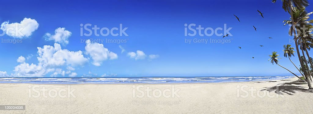 Tropical white sand virgin beach stock photo