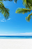 Tropical white sandy beach and palm leaves