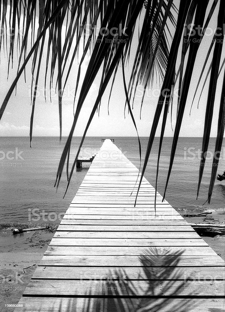 Tropicana jetty stock photo