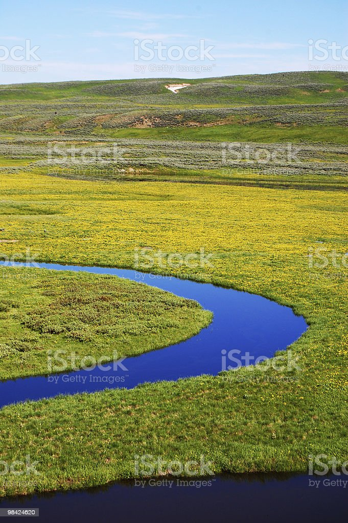 Trout Creek in Yellowstone National Park royalty-free stock photo