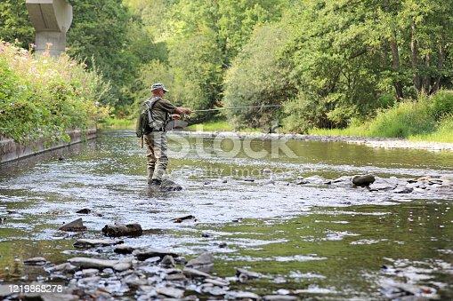 istock trout fishing scene 1219868278