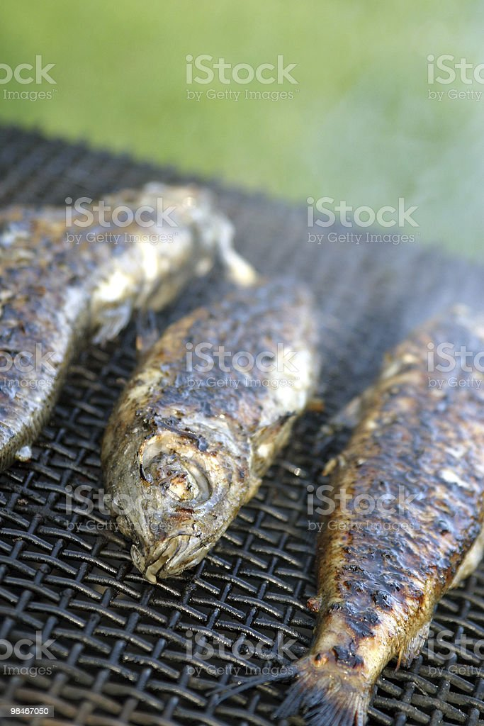 Trout on grill royalty-free stock photo