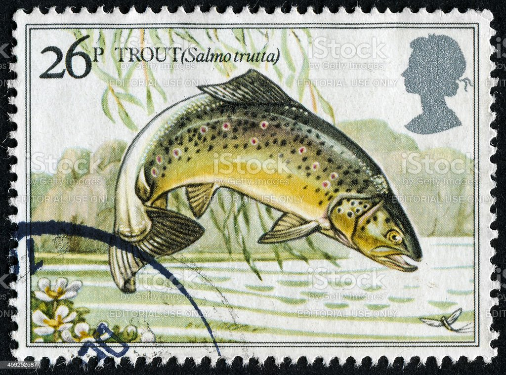 Trout Stamp royalty-free stock photo