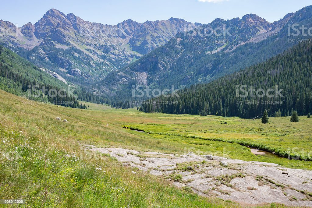 Trout stream along the hiking trail stock photo