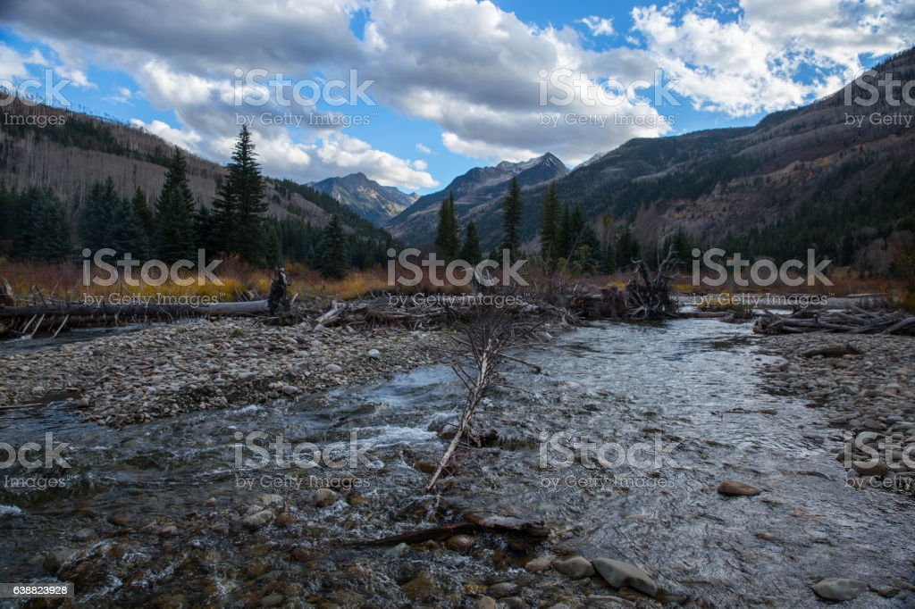 Trout Stream stock photo