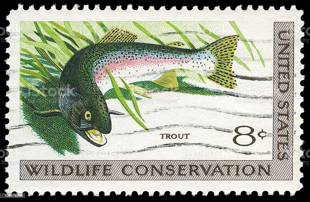 Trout Wildlife Conservation Stamp royalty-free stock photo