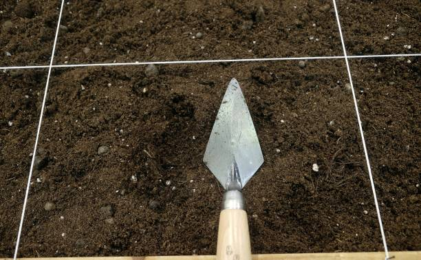 trowel by archaeologist stock photo