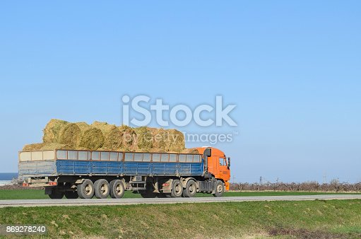 istock Truck carrying hay in his body. Making hay for the winter. 869278240