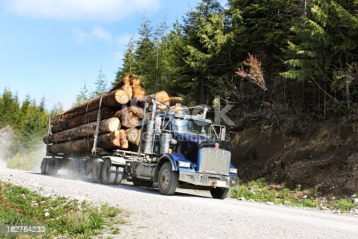 A logging truck travelling with a full load.Please see some similar pictures from my portfolio: