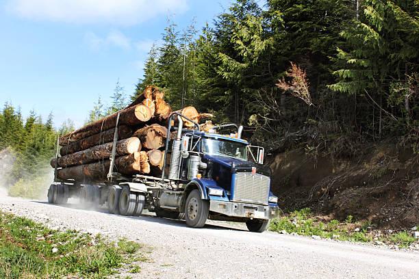 로깅 배달차 - 목재 공업 뉴스 사진 이미지