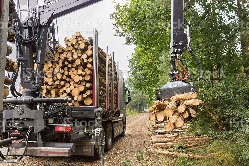 Truck lifting tree trunks with grabber on trailer stock photo