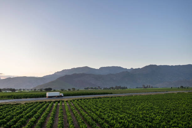 Truck on highway at sunrise driving through winelands of South Africa stock photo