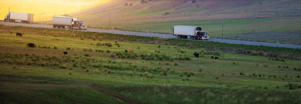 lkw auf der straße utah, usa - aufgemotzte trucks stock-fotos und bilder