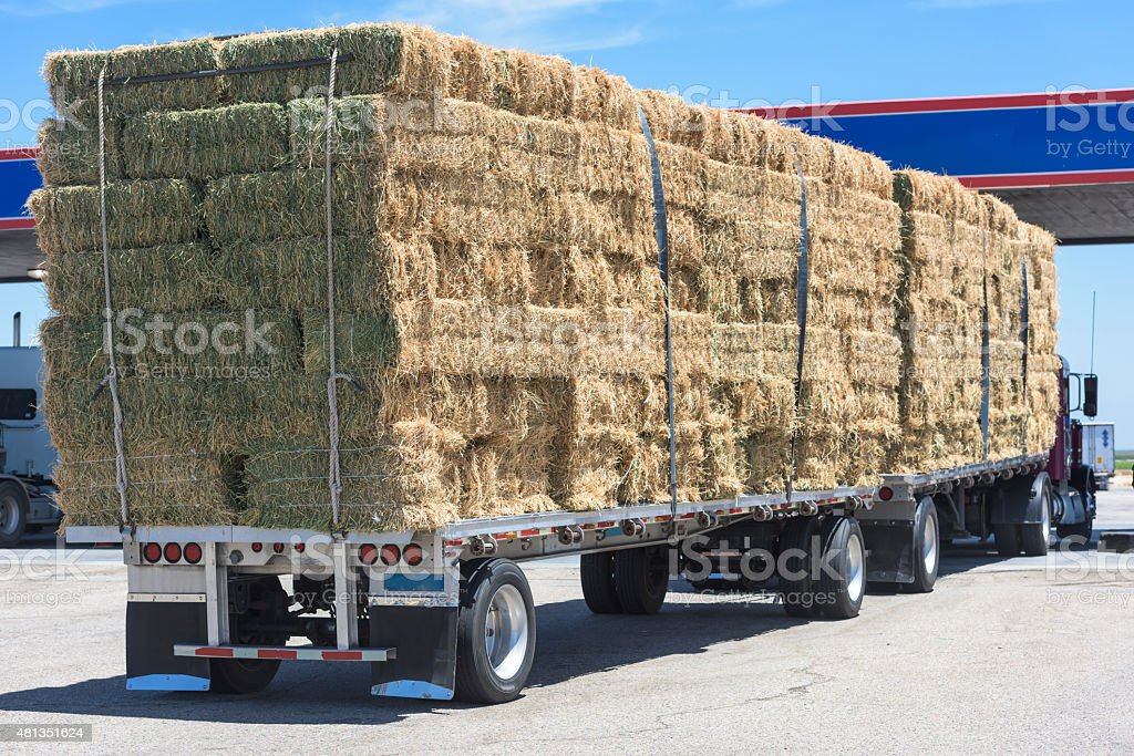 Truck with Stacks of haystack stock photo