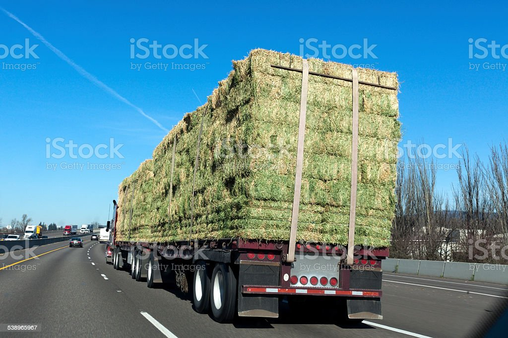 Trucking with Hay stock photo