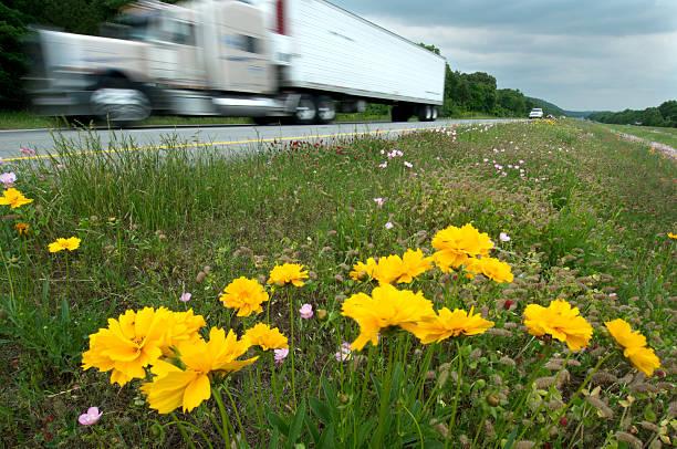 Trucks und Wildblumen auf der Interstate – Foto