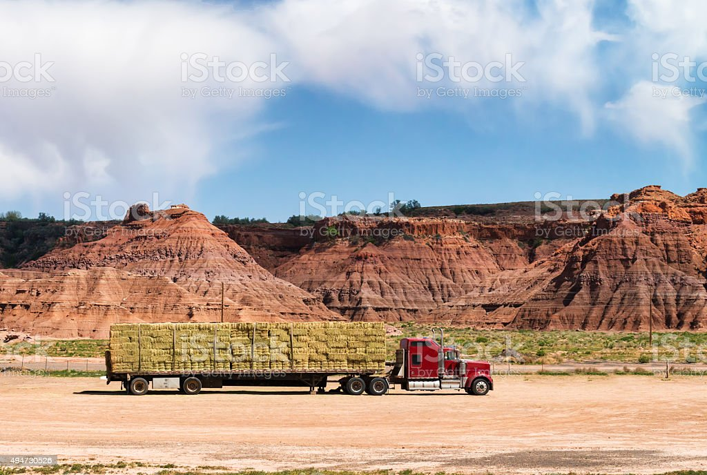 Trucks for transportation of fodder stock photo