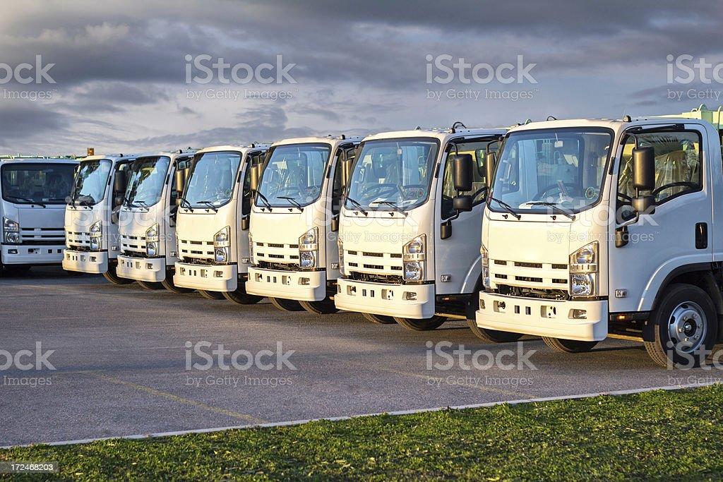 Trucks in a Row royalty-free stock photo