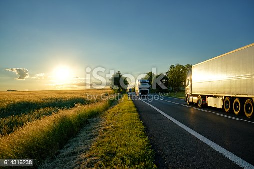Trucks moving against each other on an asphalt road running along a cornfield at sunset.