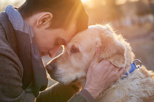 True friendship Man embracing his faithful friend the dog face to face stock pictures, royalty-free photos & images