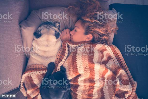True love sleeping all together in the morning young beautiful woman picture id977643468?b=1&k=6&m=977643468&s=612x612&h=znd8gq oued8kwho9iapbqn9jk8f7hvanhrparx60b0=