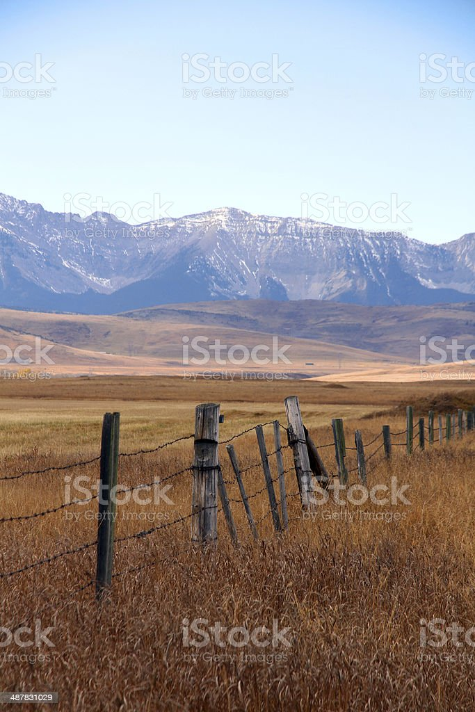 True Prairie stock photo