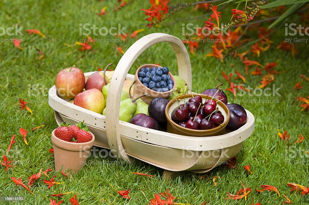 trug of summer fruit stock photo