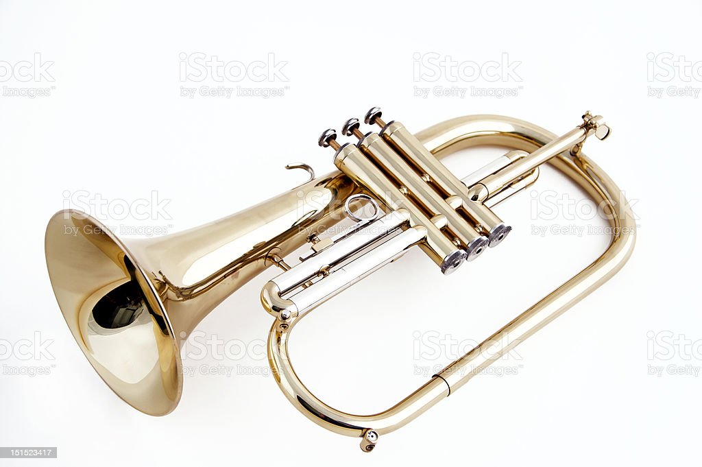 Trumpet flugelhorn Isolated on White stock photo