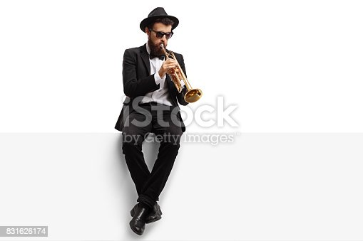 istock Trumpet player sitting on a panel 831626174
