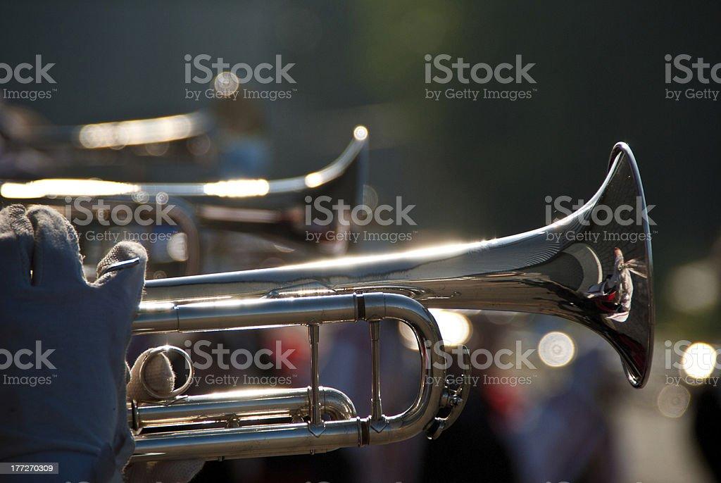 Trumpetline stock photo