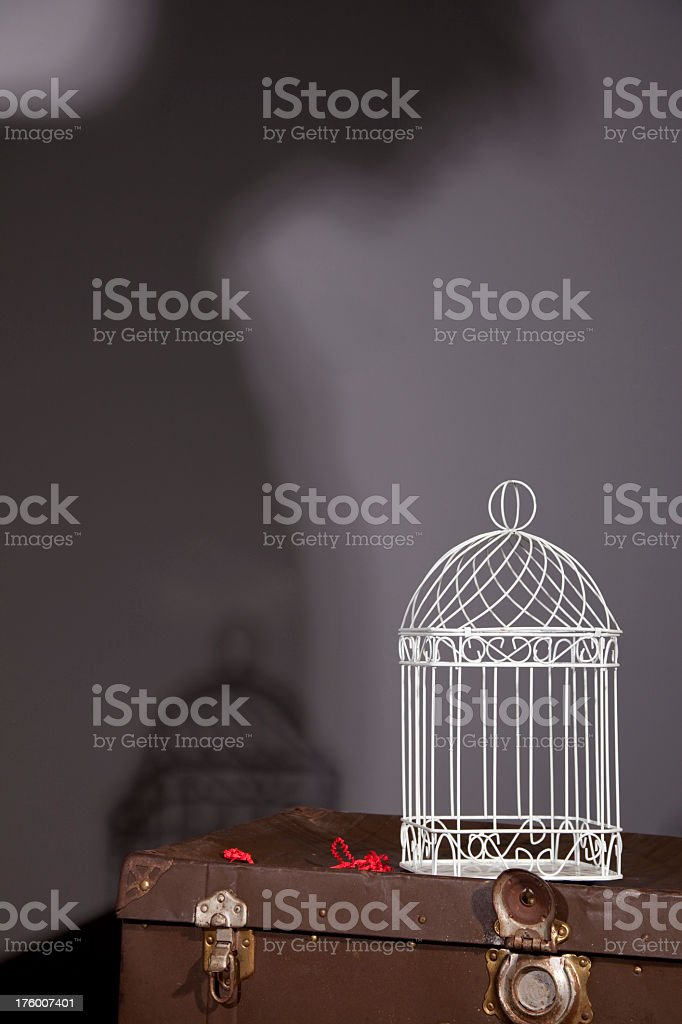 Trunk and birdcage in attic, shadow of human on wall. royalty-free stock photo