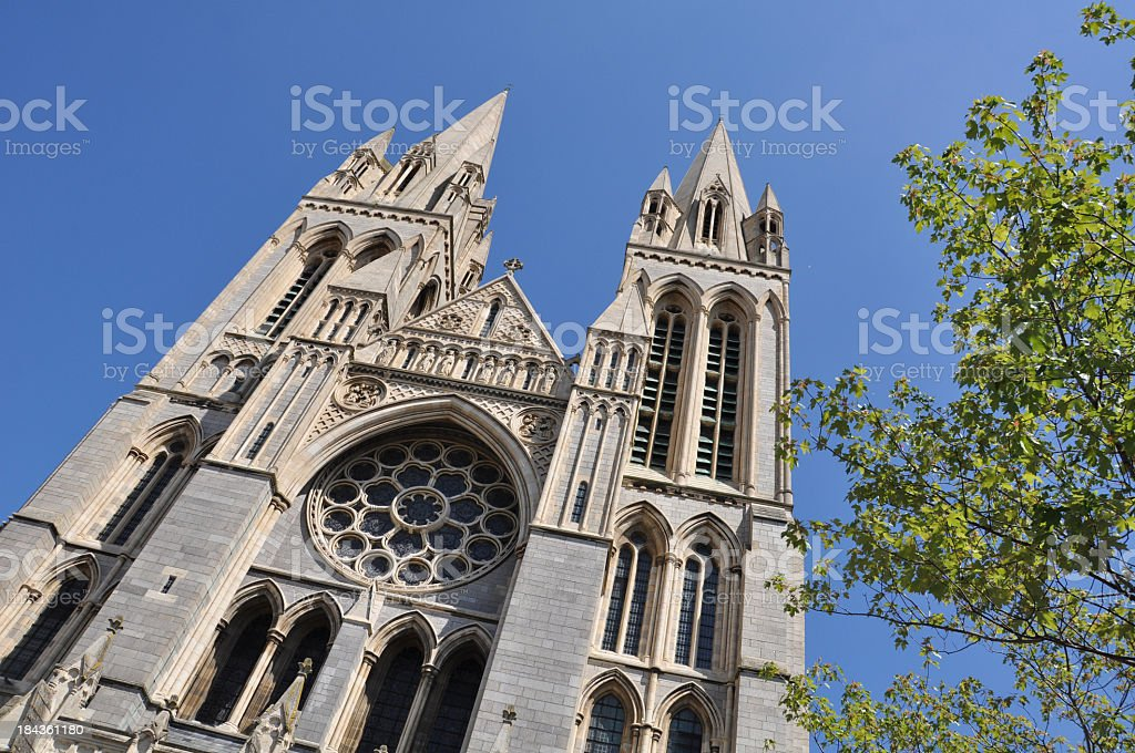 Truro Cathedral with Tree stock photo