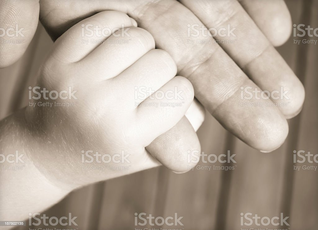 Trusting Hand royalty-free stock photo